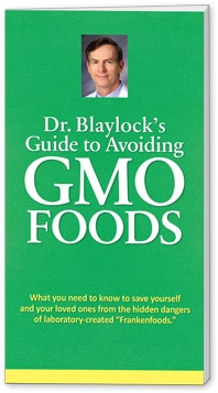 Gmo food — it's worse than we thought dr. Russell blaylock.